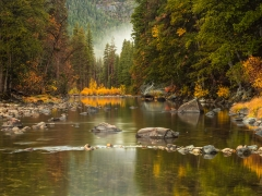 Fall Colors Along the Merced River
