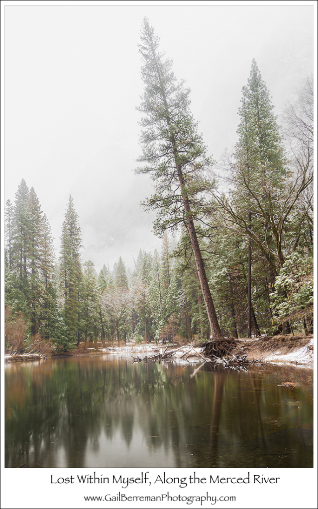 Lost With Myself, Along the Merced River
